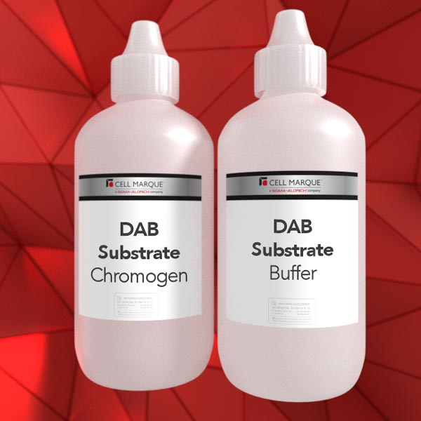 DAB Substrate Kit