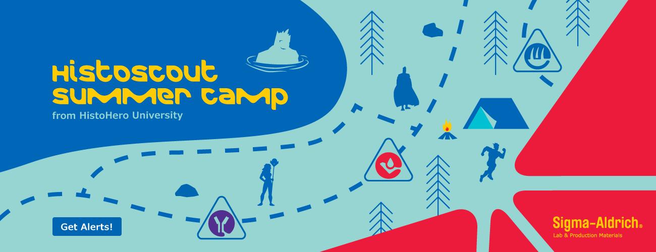 Summer Camp Get Alerts