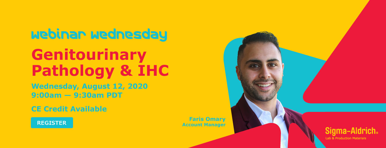 Genitourinary Pathology & IHC